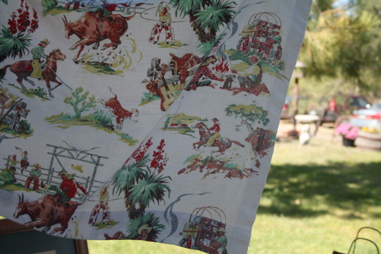Two women cowboy fabric
