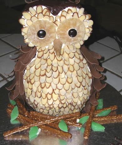Owl cake 3D