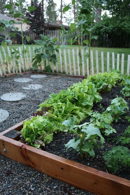 Spokane garden