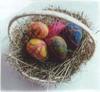 Spring_egg_kit