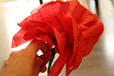 Tissue_flower_pull