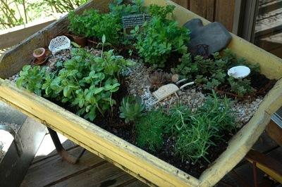 Wee_herb_garden