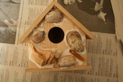 Shell_house2
